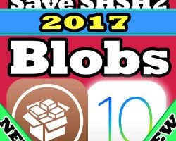 save shshs2 blobs