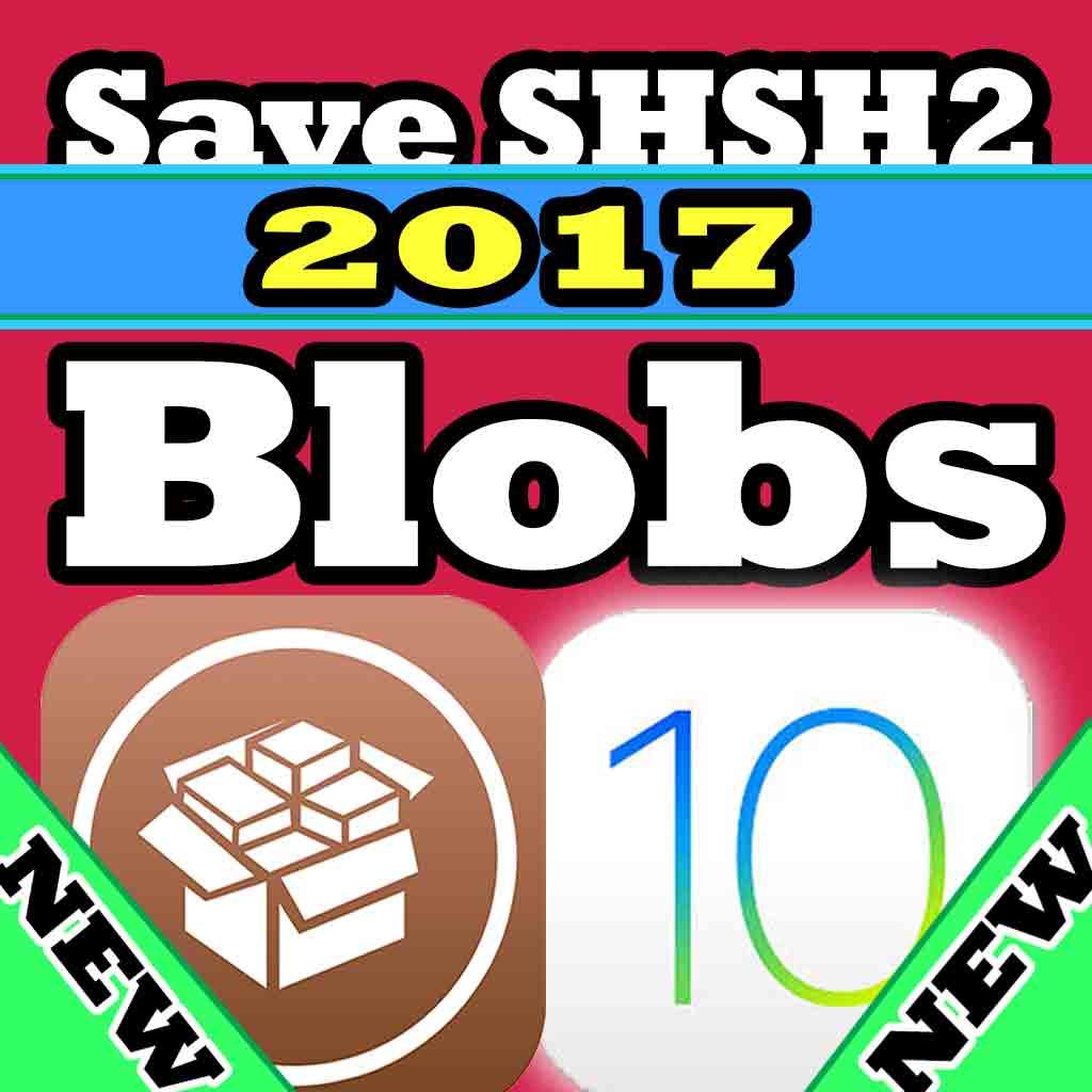save shshs2 blobs